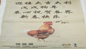 Malaysian government in dispute showing Rooster barking in advertisement Apology sought after criticism